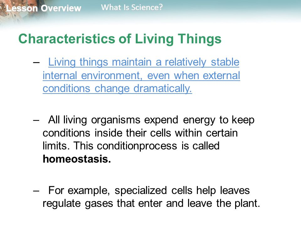 Lesson Overview Lesson Overview What Is Science? Characteristics of Living Things – Living things maintain a relatively stable internal environment, e