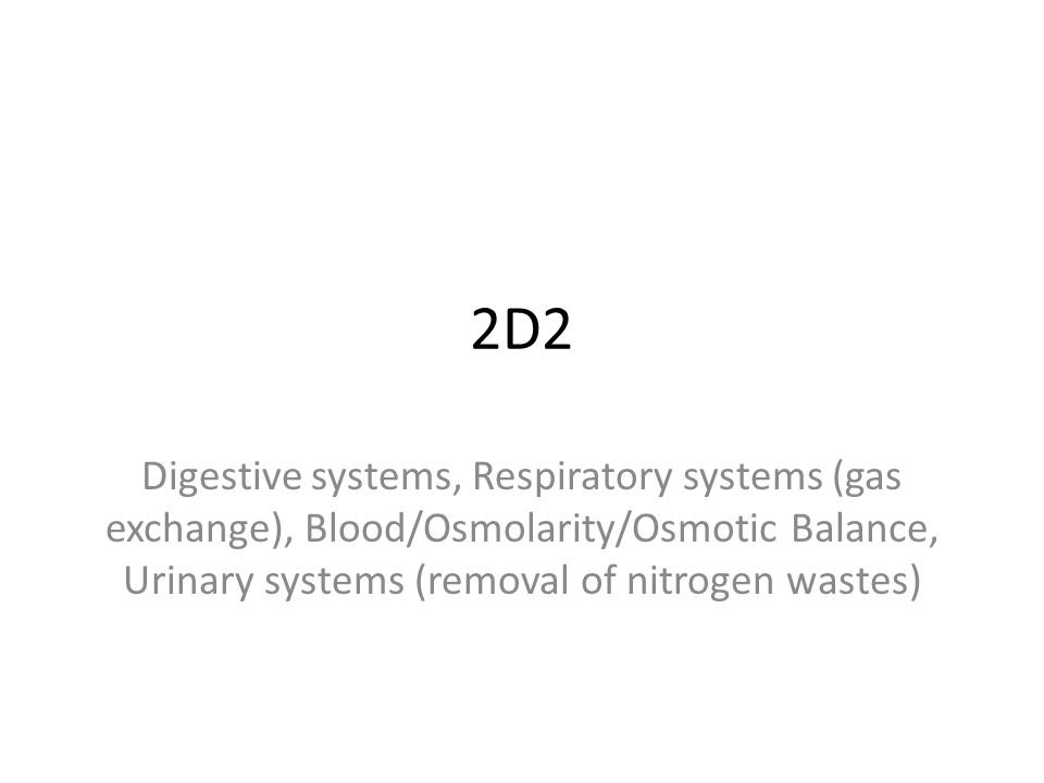 2D2 Digestive systems, Respiratory systems (gas exchange), Blood/Osmolarity/Osmotic Balance, Urinary systems (removal of nitrogen wastes)