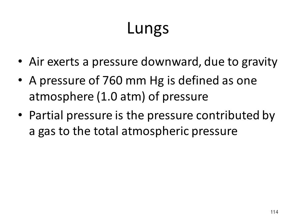 Lungs Air exerts a pressure downward, due to gravity A pressure of 760 mm Hg is defined as one atmosphere (1.0 atm) of pressure Partial pressure is the pressure contributed by a gas to the total atmospheric pressure 114