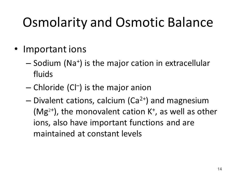 Osmolarity and Osmotic Balance Important ions – Sodium (Na + ) is the major cation in extracellular fluids – Chloride (Cl – ) is the major anion – Divalent cations, calcium (Ca 2+ ) and magnesium (Mg 2 + ), the monovalent cation K +, as well as other ions, also have important functions and are maintained at constant levels 14
