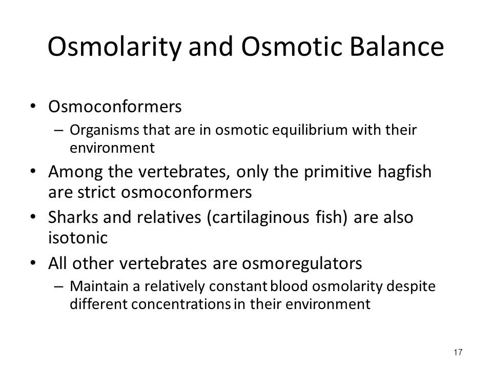 Osmolarity and Osmotic Balance Osmoconformers – Organisms that are in osmotic equilibrium with their environment Among the vertebrates, only the primitive hagfish are strict osmoconformers Sharks and relatives (cartilaginous fish) are also isotonic All other vertebrates are osmoregulators – Maintain a relatively constant blood osmolarity despite different concentrations in their environment 17