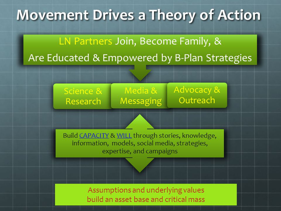 Movement Drives a Theory of Action LN Partners Join, Become Family, & Are Educated & Empowered by B-Plan Strategies Build CAPACITY & WILL through stor
