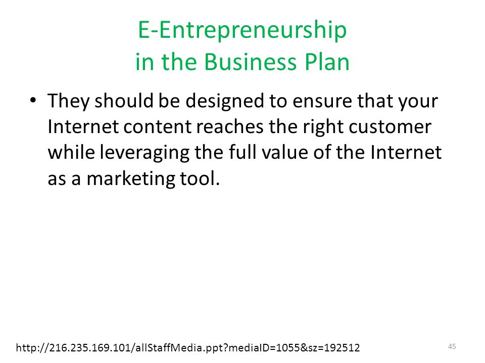 E-Entrepreneurship in the Business Plan They should be designed to ensure that your Internet content reaches the right customer while leveraging the full value of the Internet as a marketing tool.