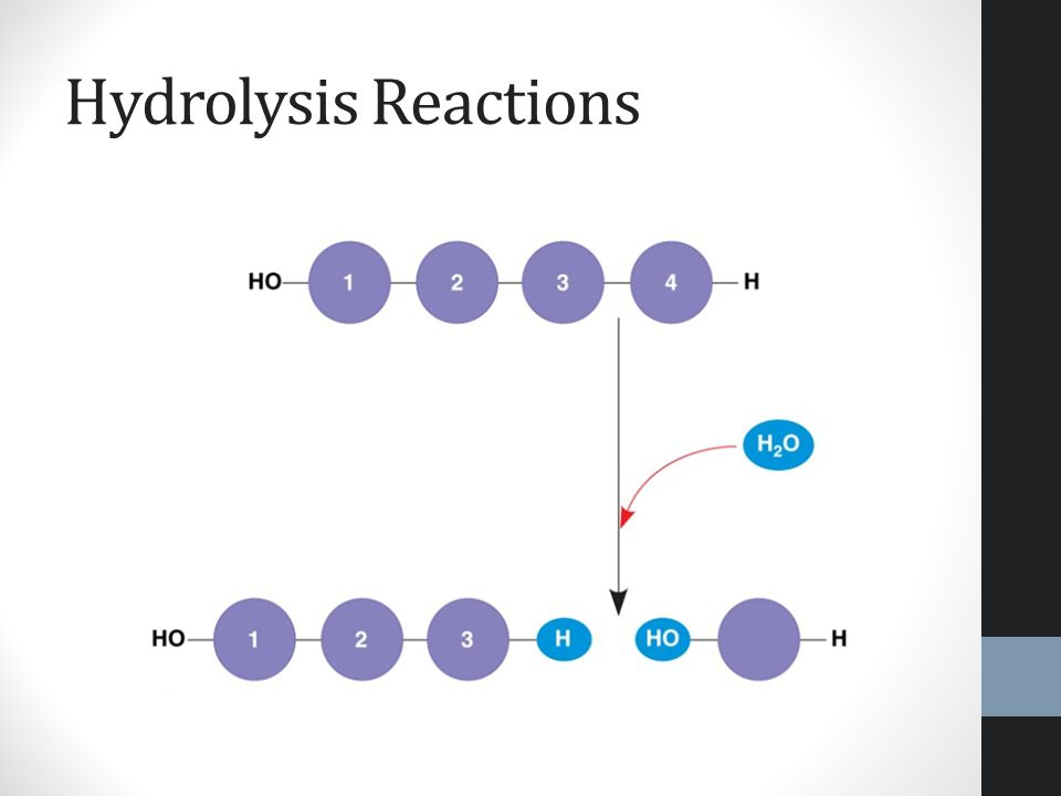 Hydrolysis Reactions