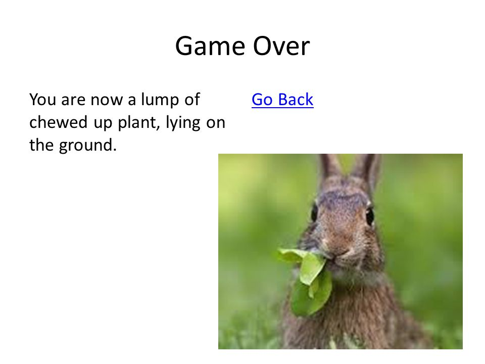 Game Over You are now a lump of chewed up plant, lying on the ground. Go Back