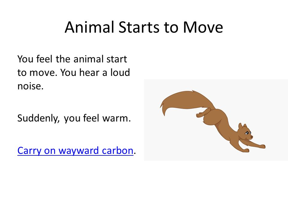 Animal Starts to Move You feel the animal start to move.