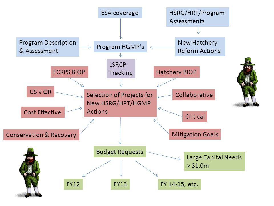 ESA Compliance Hydro BIOP RPA 39 – The FCRPS Action Agencies will continue funding hatcheries in accordance with existing programs, and will adopt programmatic criteria for funding decisions on mitigation programs for the FCRPS that incorporate BMPs.