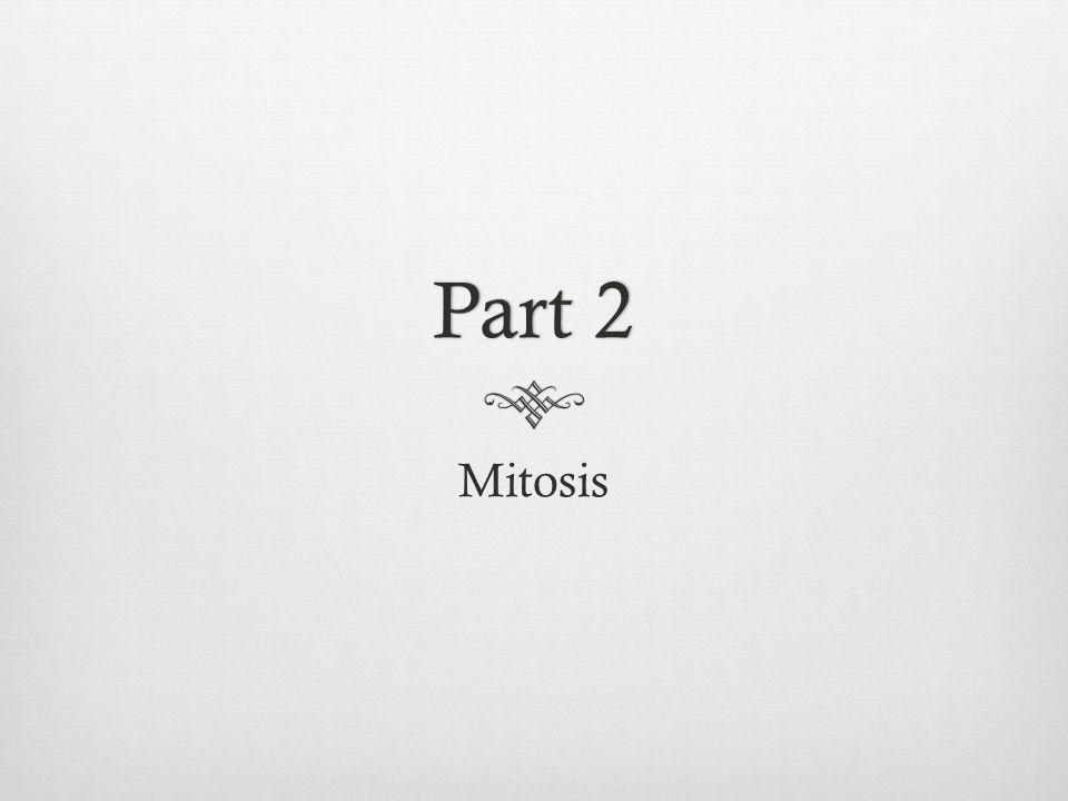 Part 2Part 2 Mitosis