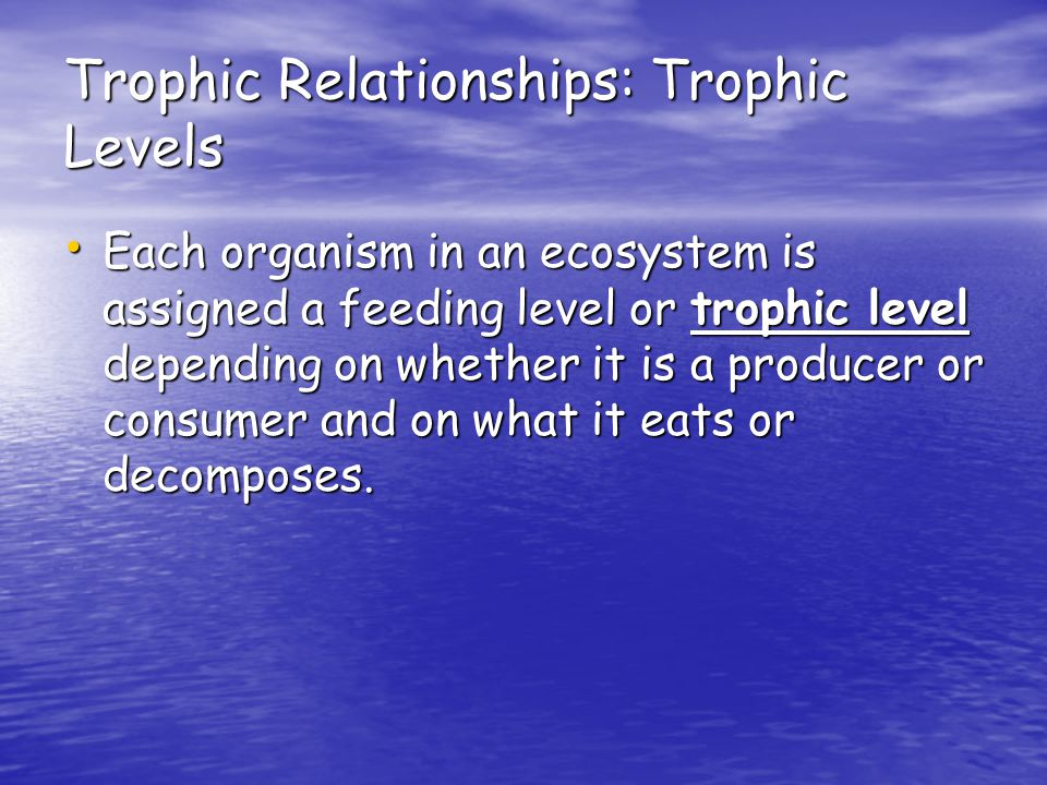 Trophic Relationships: Trophic Levels Each organism in an ecosystem is assigned a feeding level or trophic level depending on whether it is a producer or consumer and on what it eats or decomposes.