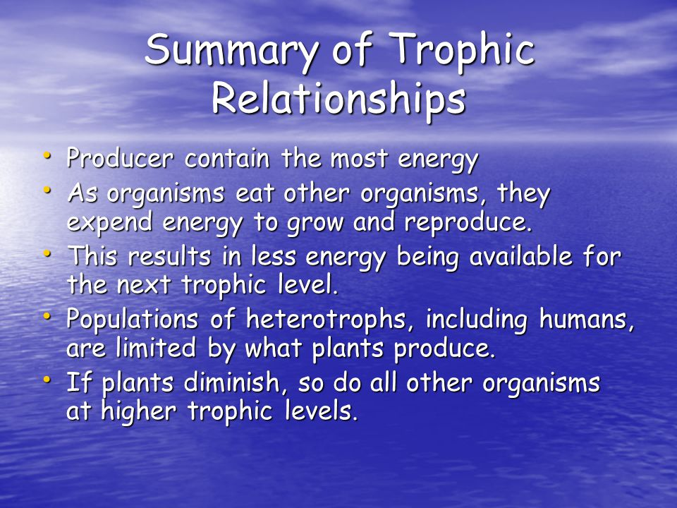 Summary of Trophic Relationships Producer contain the most energy Producer contain the most energy As organisms eat other organisms, they expend energy to grow and reproduce.