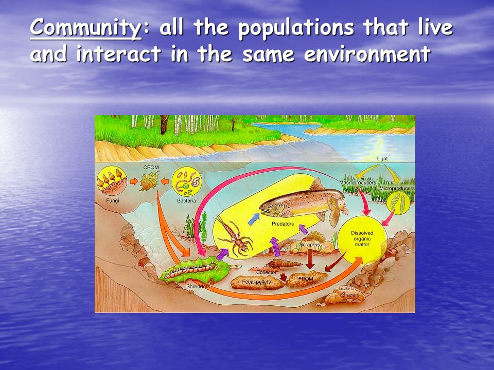 The Biosphere The biosphere is the portion of the Earth in which biotic organisms (living) interact with one another and their abiotic environment.