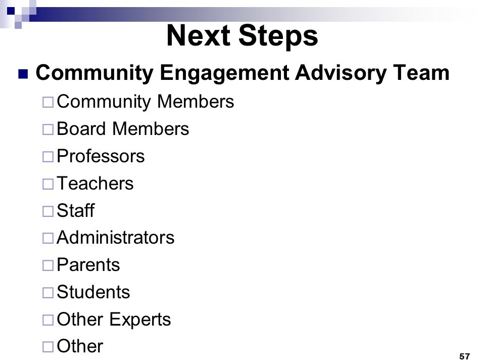 Next Steps Community Engagement Advisory Team  Community Members  Board Members  Professors  Teachers  Staff  Administrators  Parents  Students  Other Experts  Other 57