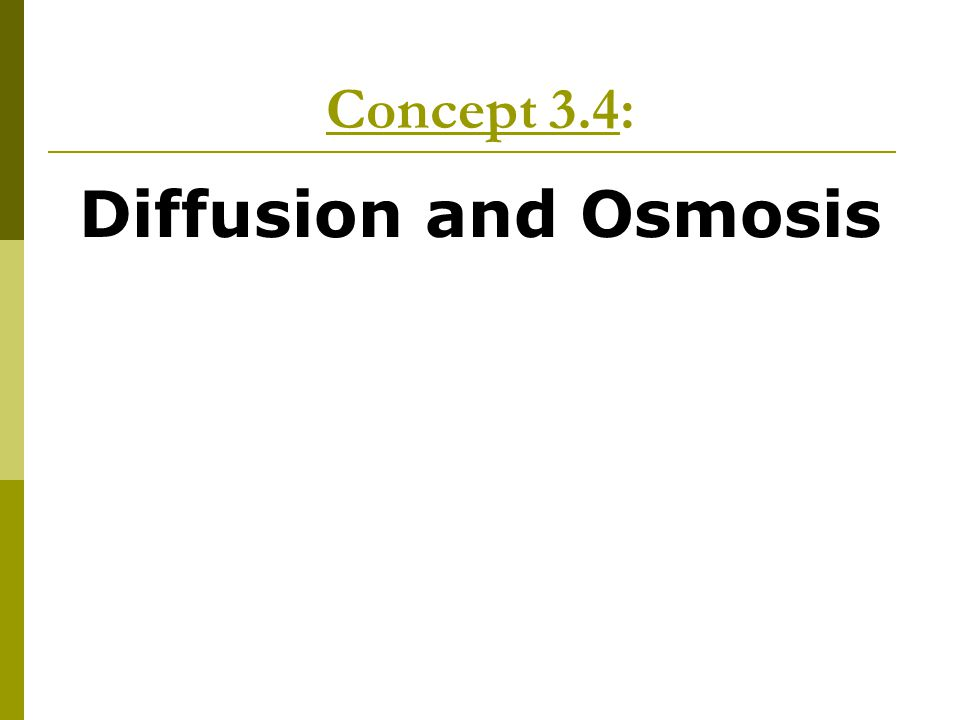 Concept 3.4: Diffusion and Osmosis