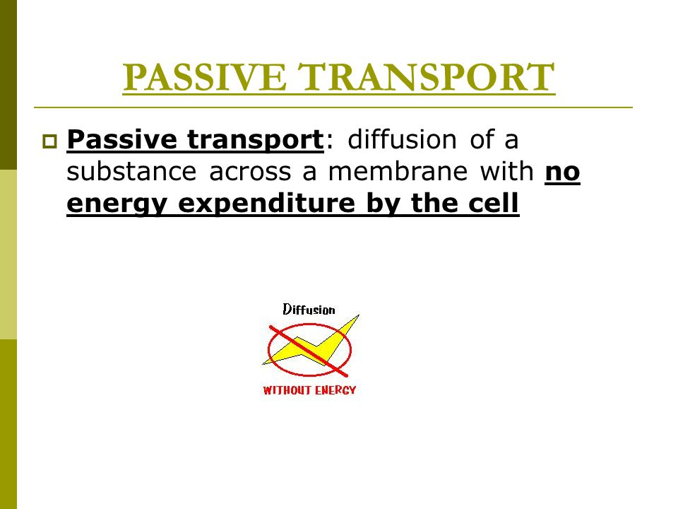 PASSIVE TRANSPORT  Passive transport: diffusion of a substance across a membrane with no energy expenditure by the cell