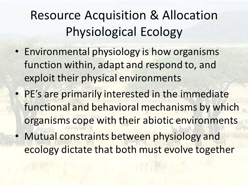 Resource Acquisition & Allocation Physiological Ecology Environmental physiology is how organisms function within, adapt and respond to, and exploit their physical environments PE's are primarily interested in the immediate functional and behavioral mechanisms by which organisms cope with their abiotic environments Mutual constraints between physiology and ecology dictate that both must evolve together