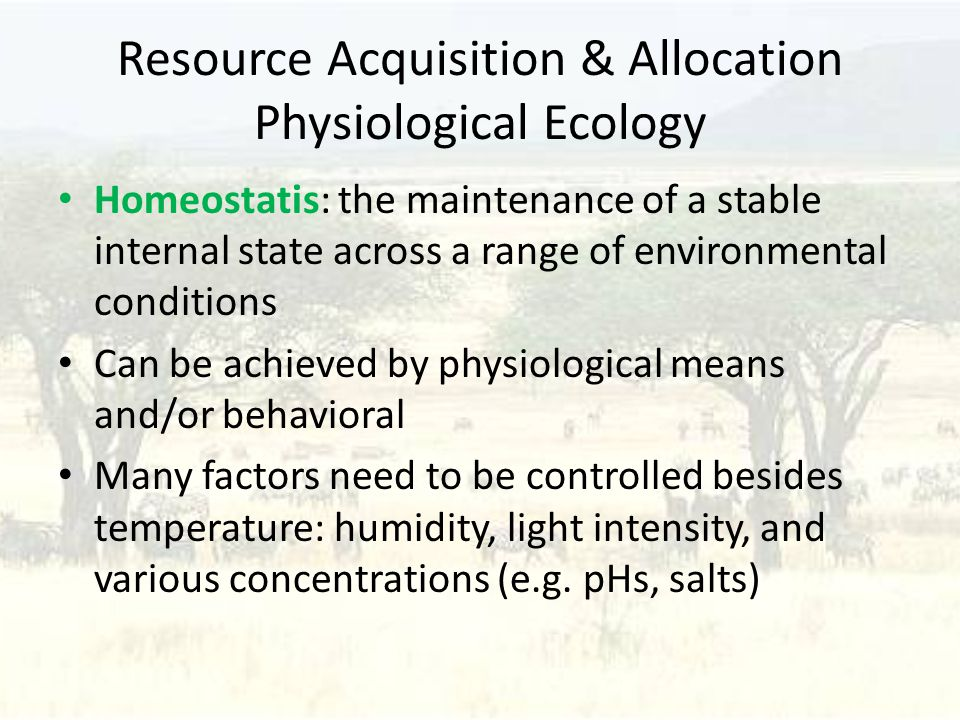 Resource Acquisition & Allocation Physiological Ecology Homeostatis: the maintenance of a stable internal state across a range of environmental conditions Can be achieved by physiological means and/or behavioral Many factors need to be controlled besides temperature: humidity, light intensity, and various concentrations (e.g.