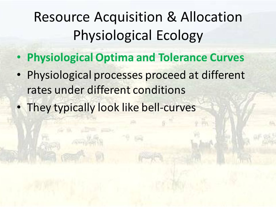 Resource Acquisition & Allocation Physiological Ecology Physiological Optima and Tolerance Curves Physiological processes proceed at different rates under different conditions They typically look like bell-curves