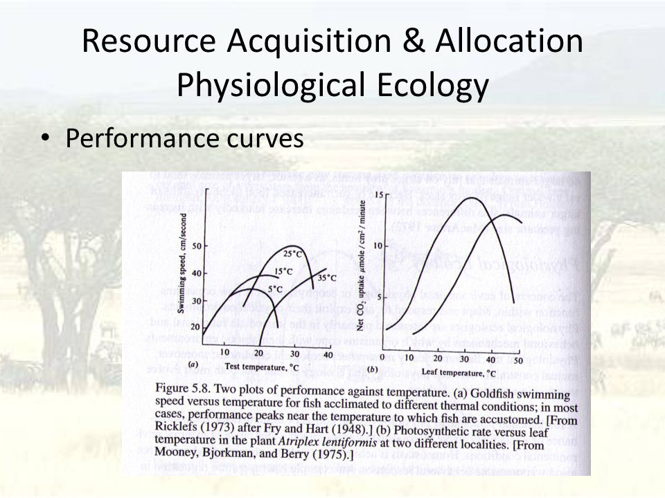 Resource Acquisition & Allocation Physiological Ecology Performance curves