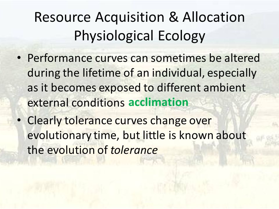 Resource Acquisition & Allocation Physiological Ecology Performance curves can sometimes be altered during the lifetime of an individual, especially as it becomes exposed to different ambient external conditions Clearly tolerance curves change over evolutionary time, but little is known about the evolution of tolerance acclimation