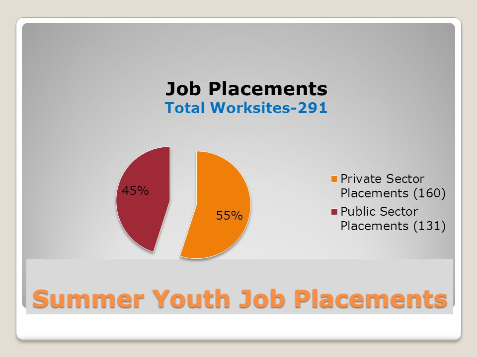 Summer Youth Job Placements