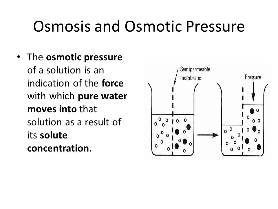 Osmosis and Osmotic Pressure The osmotic pressure of a solution is an indication of the force with which pure water moves into that solution as a resu