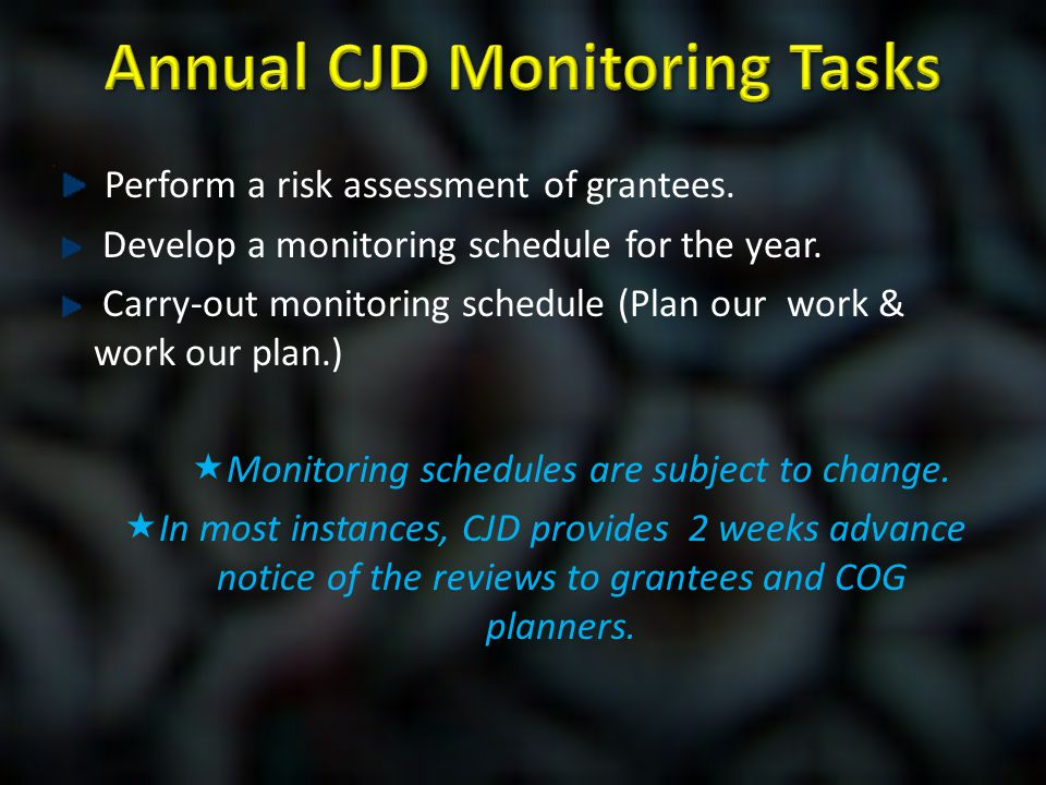 Perform a risk assessment of grantees. Develop a monitoring schedule for the year. Carry-out monitoring schedule (Plan our work & work our plan.)  Mo