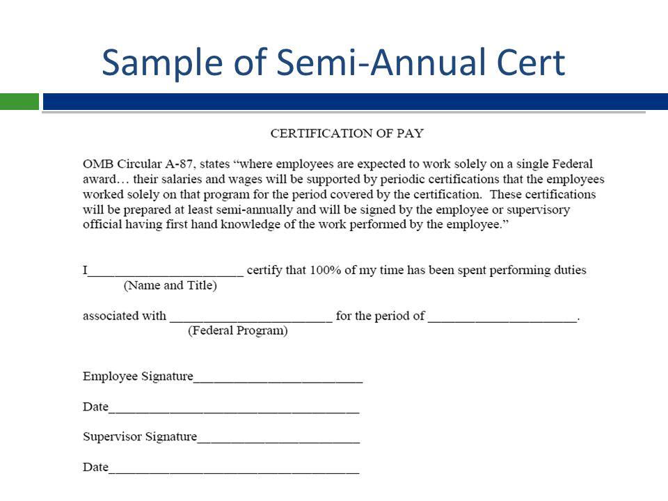 Semi-Annual Cert (Alternative) Form  Who.