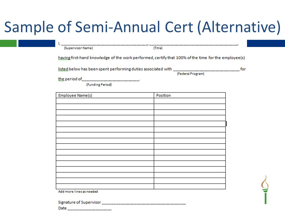 Sample of Semi-Annual Cert (Alternative)