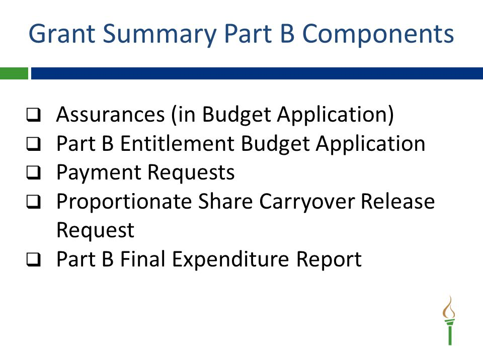 IDEA Part B Budget Application