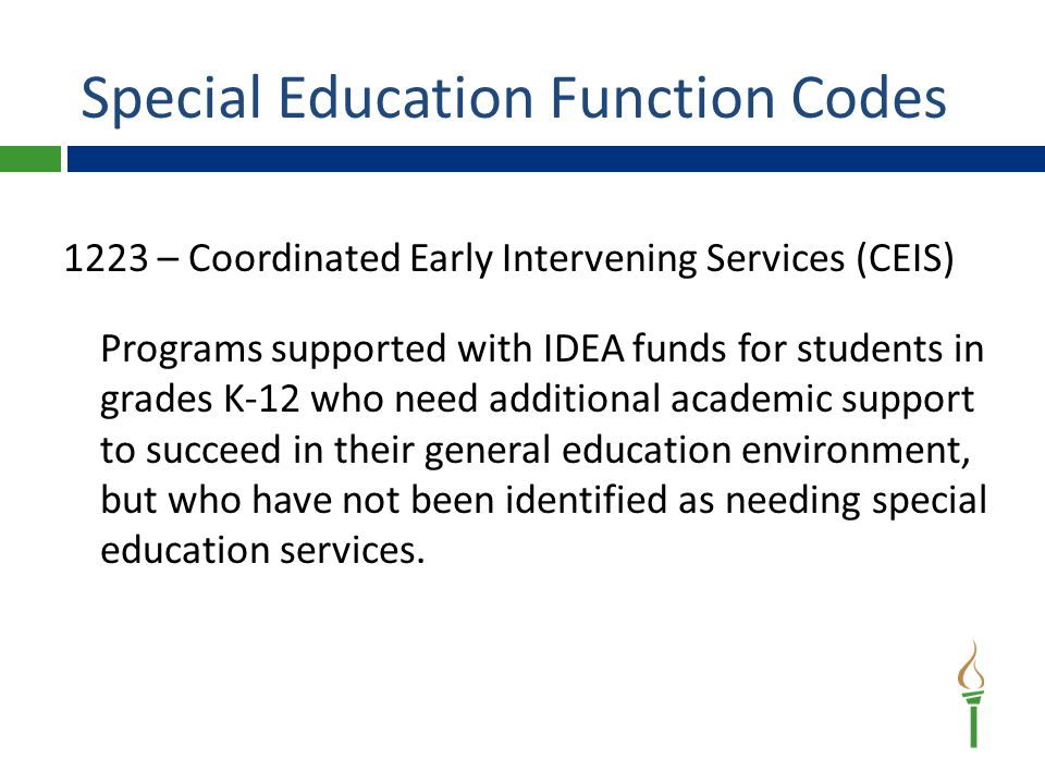 Special Education Function Codes 1223 – Coordinated Early Intervening Services (CEIS) Programs supported with IDEA funds for students in grades K-12 who need additional academic support to succeed in their general education environment, but who have not been identified as needing special education services.