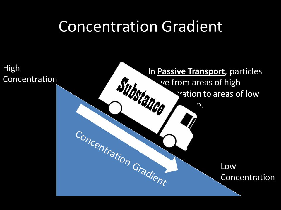 Concentration Gradient High Concentration Low Concentration Concentration Gradient In Passive Transport, particles move from areas of high concentrati