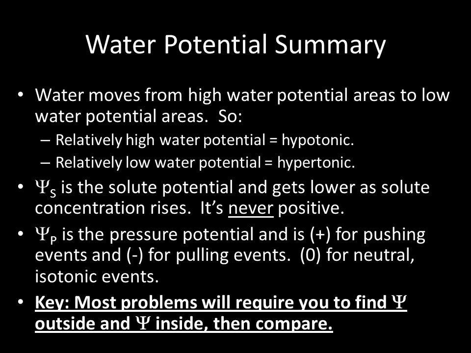 Water Potential Summary Water moves from high water potential areas to low water potential areas. So: – Relatively high water potential = hypotonic. –