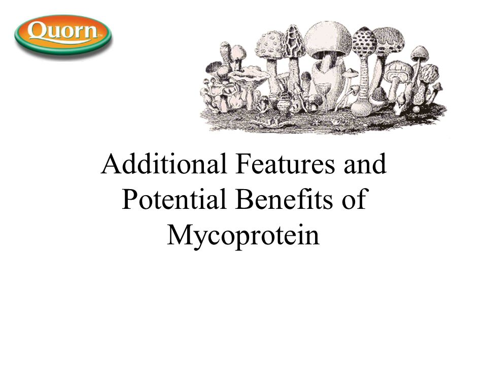 Additional Features and Potential Benefits of Mycoprotein