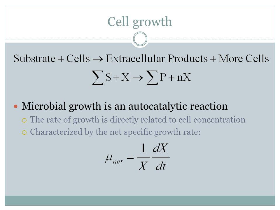 Stationary Phase (cont'd) During the stationary phase, the cell catabolizes cellular reserves for new building blocks and for energy-producing monomers  This is called endogenous metabolism The cell must expend maintenance energy in order to stay alive  The equation that describes the conversion of cellular mass into energy, or the loss of cell mass due to lysis during the stationary phase is: