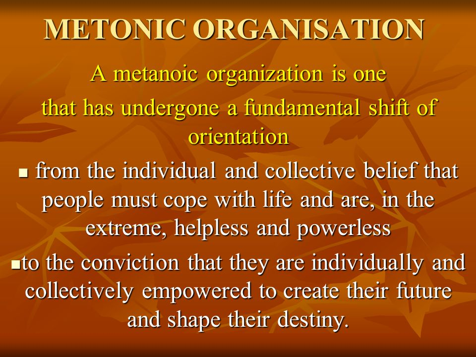 METONIC ORGANISATION A metanoic organization is one that has undergone a fundamental shift of orientation from the individual and collective belief th