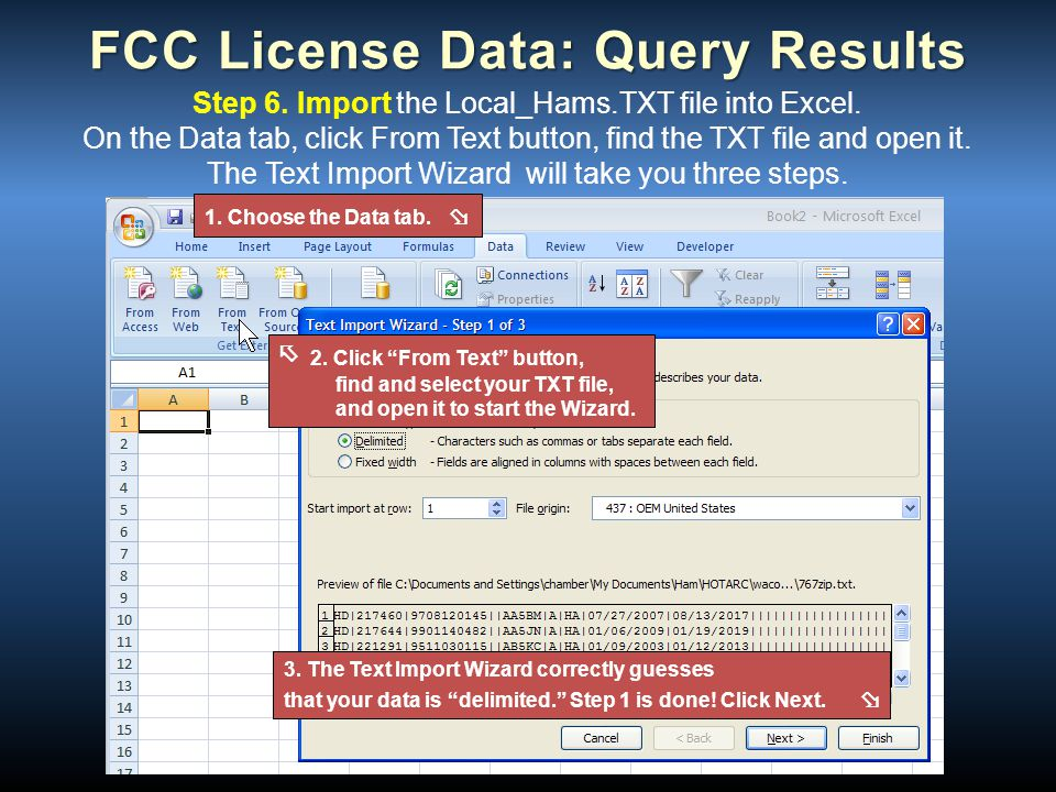 FCC License Data: Query Results Step 6. Import the Local_Hams.TXT file into Excel. On the Data tab, click From Text button, find the TXT file and open