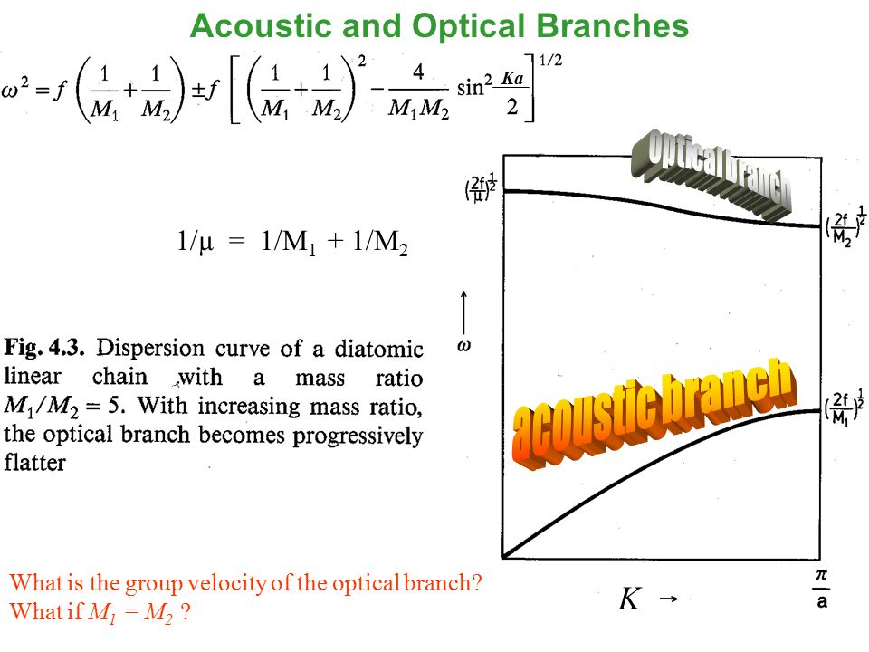 19 1/µ = 1/M 1 + 1/M 2 What is the group velocity of the optical branch.
