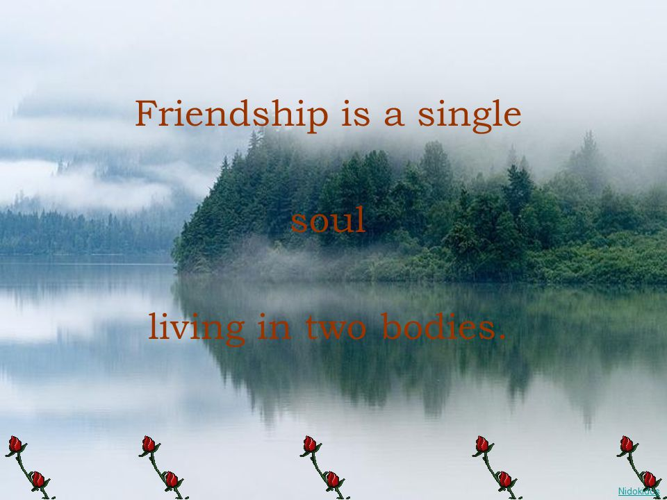Friendship is a single soul living in two bodies.