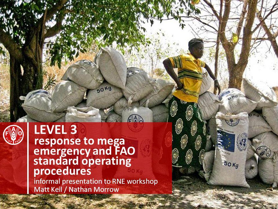 LEVEL 3 informal presentation to RNE workshop emergency and FAO response to mega standard operating procedures Matt Keil / Nathan Morrow 1