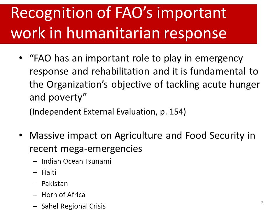 """""""FAO has an important role to play in emergency response and rehabilitation and it is fundamental to the Organization's objective of tackling acute hu"""