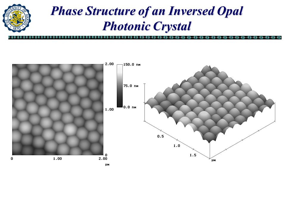 Phase Structure of an Inversed Opal Photonic Crystal