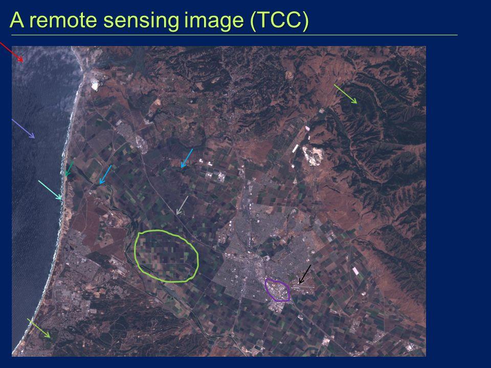 A remote sensing image (TCC) A remote sensing image (TCC)