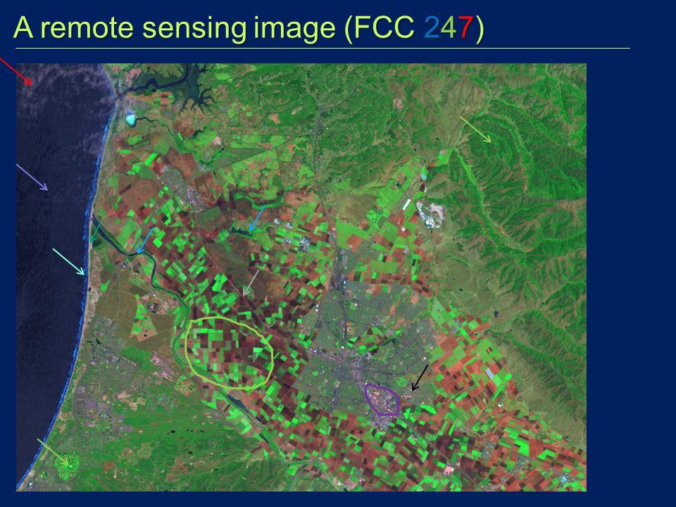 A remote sensing image (FCC 247) A remote sensing image (FCC 247)