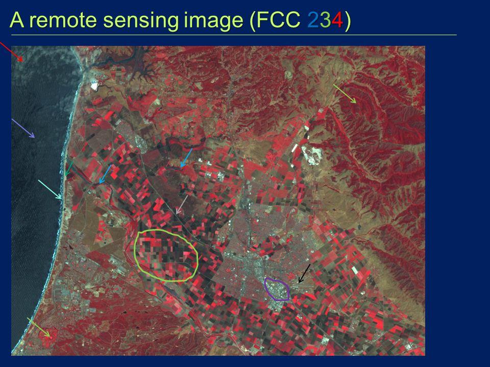 A remote sensing image (FCC 234) A remote sensing image (FCC 234)