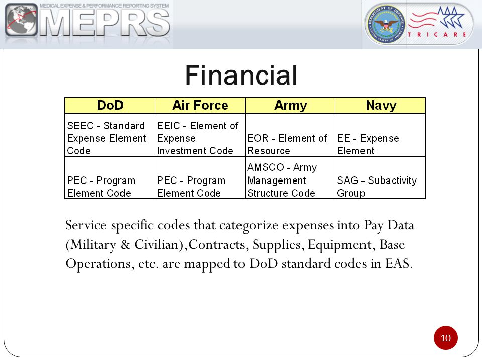 Financial Service specific codes that categorize expenses into Pay Data (Military & Civilian),Contracts, Supplies, Equipment, Base Operations, etc.
