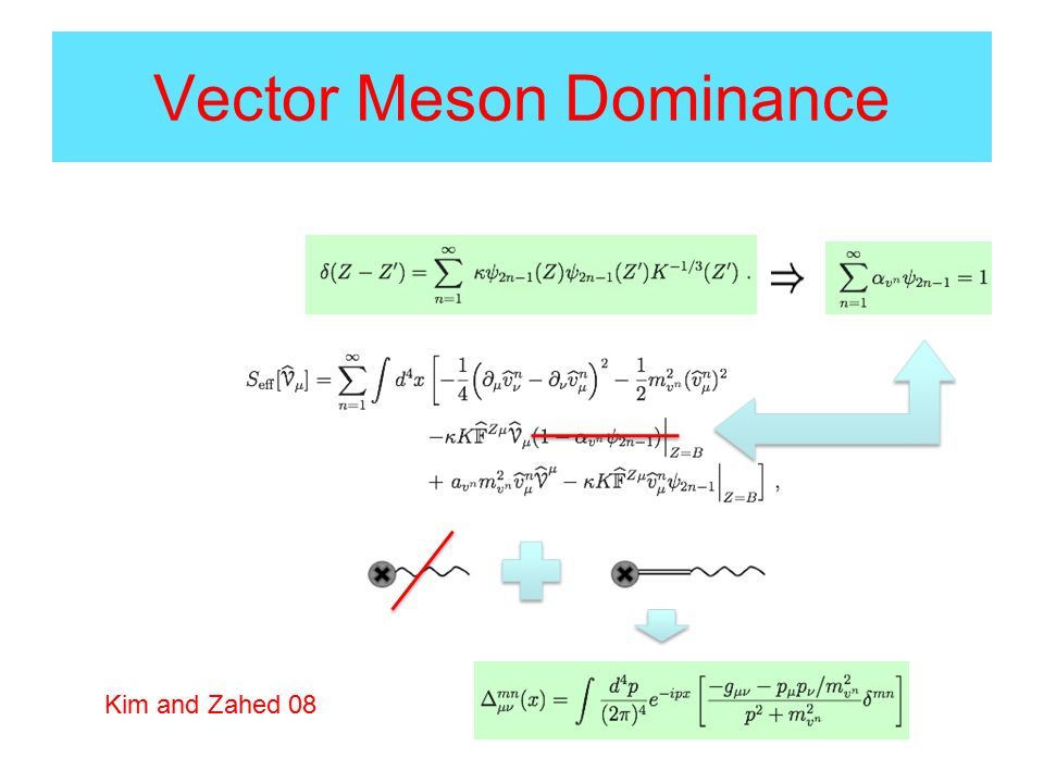 Vector Meson Dominance Kim and Zahed 08