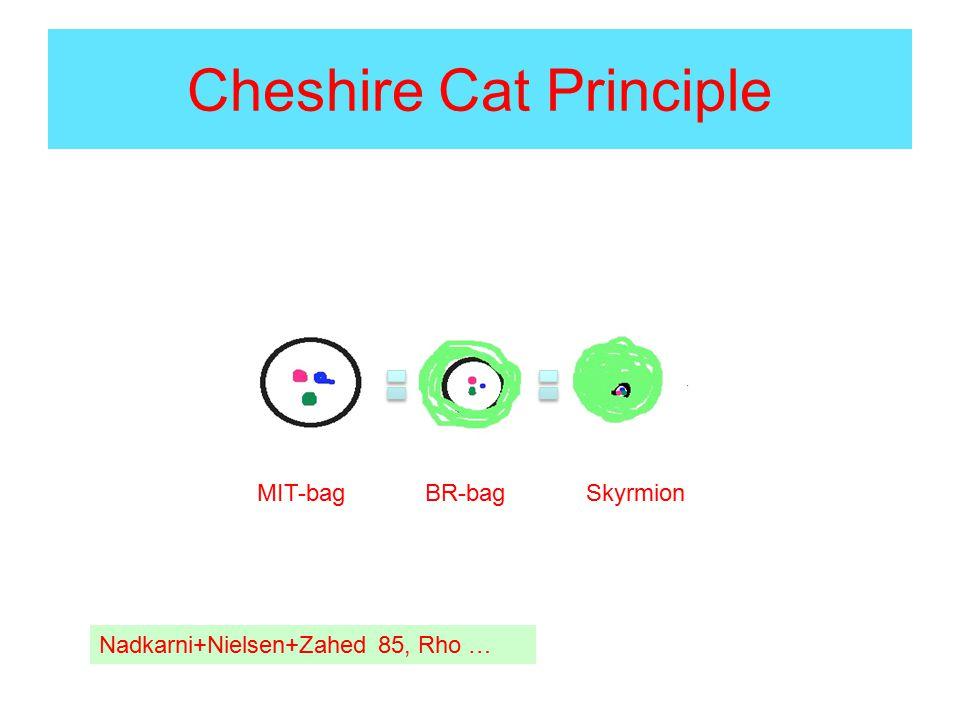 Cheshire Cat Principle MIT-bag BR-bag Skyrmion Nadkarni+Nielsen+Zahed 85, Rho …