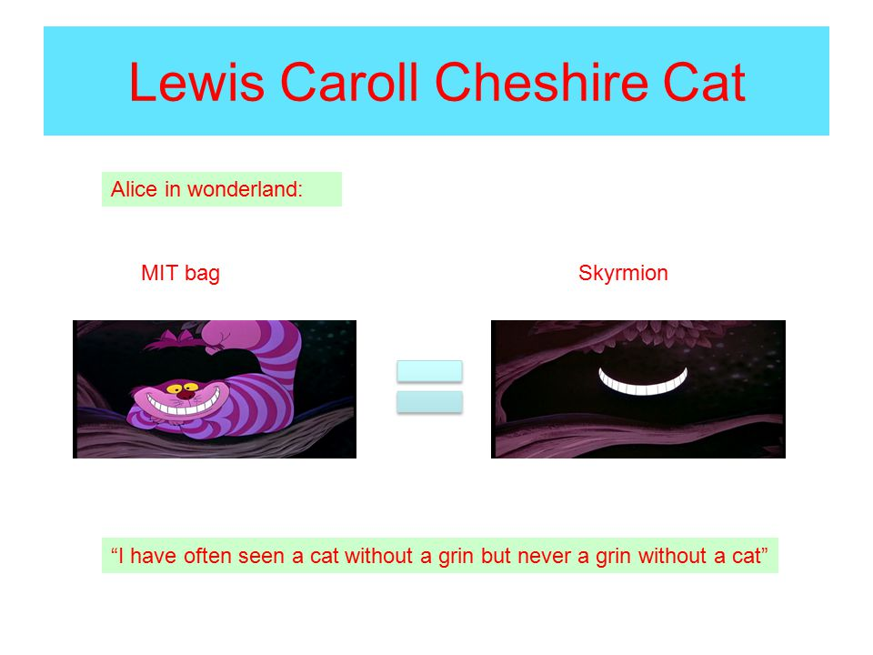 Lewis Caroll Cheshire Cat I have often seen a cat without a grin but never a grin without a cat MIT bag Skyrmion Alice in wonderland: