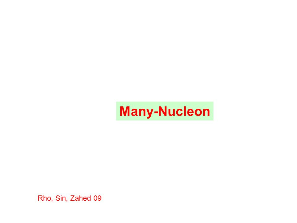 Many-Nucleon Rho, Sin, Zahed 09