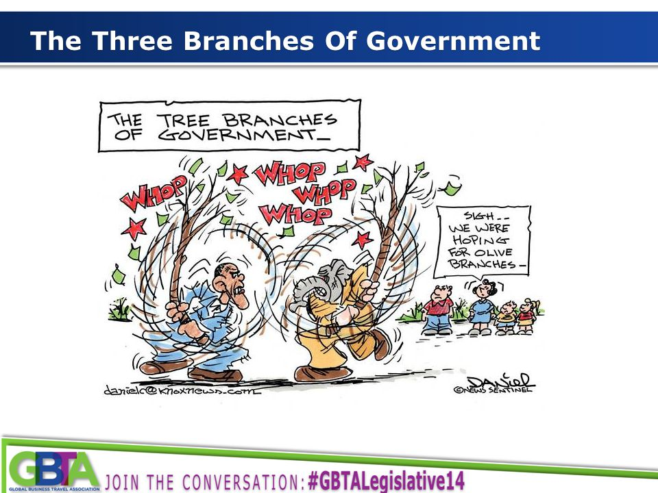 3 The Three Branches Of Government